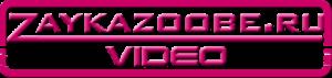Видеосайт  Зайки Zoobe!