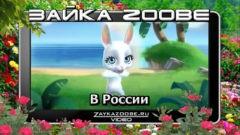Зайка Zoobe. В России