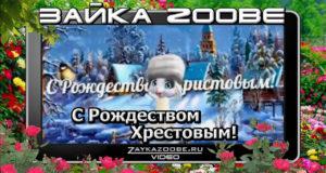 Зайка Zoobe. С Рождеством Хрестовым